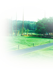 Golf Course Poles and Netting